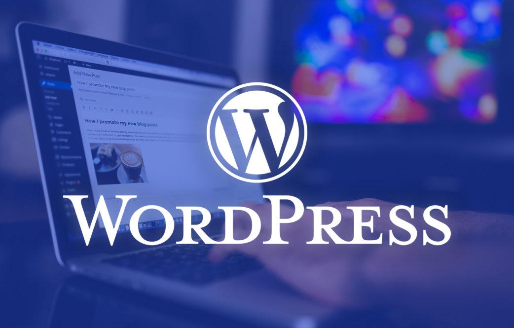 Hướng dẫn quản lý đơn hàng và báo cáo trong website WordPress