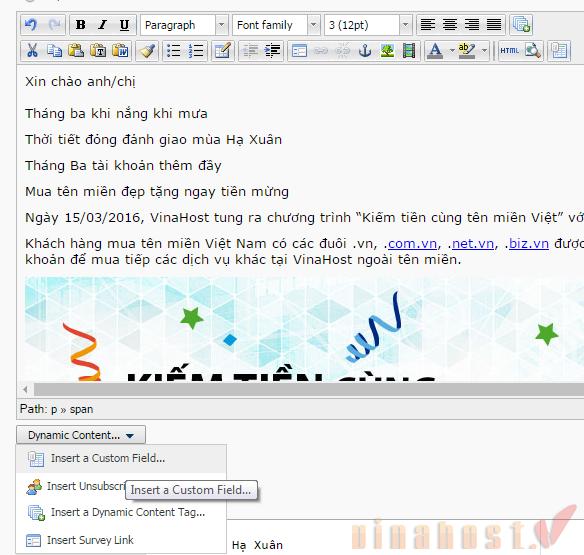 e2086fd7a0-vinahost-ca-nhan-hoa-noi-dung-tren-email-marketing-1